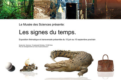 Affiche de musée