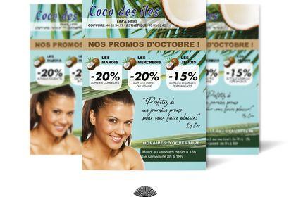 Affiche web Coco des îles