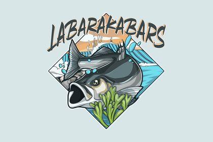LABARAKABARS