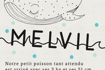 """Faire-part naissance """"MELVIL"""""""