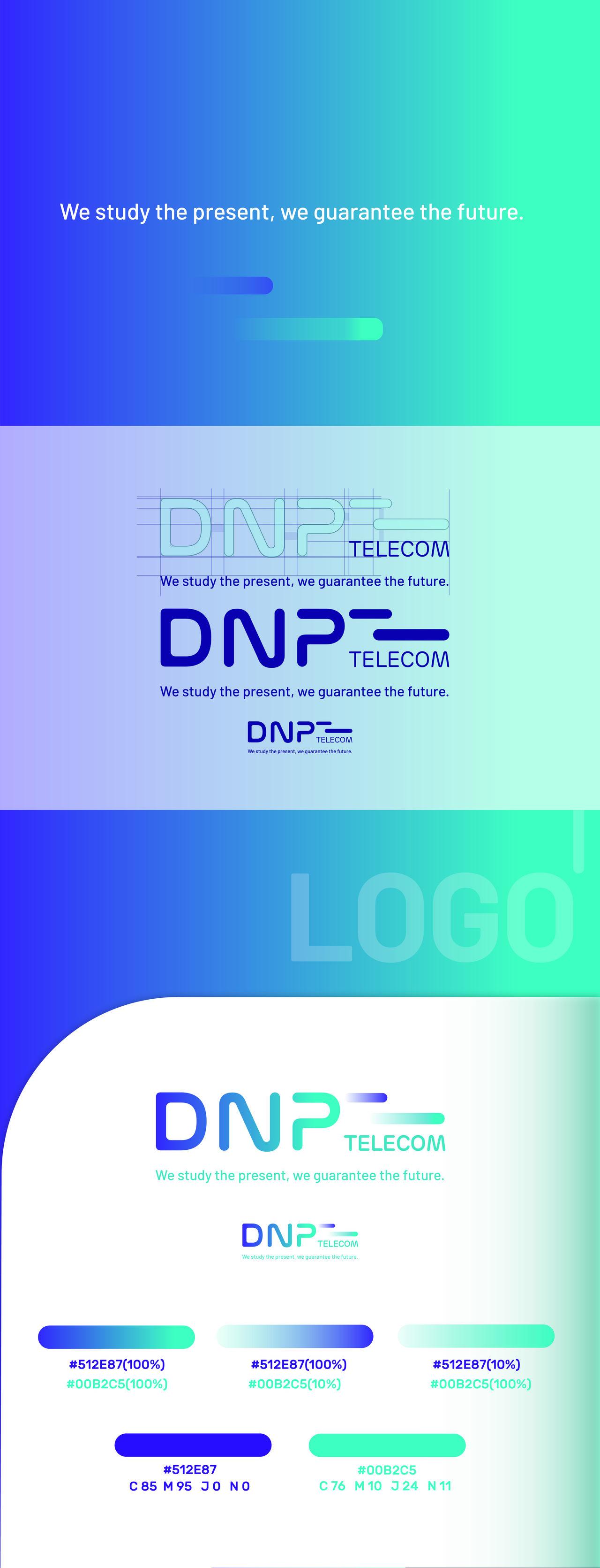 DNP TELECOM CHARTE GRAPHIQUE