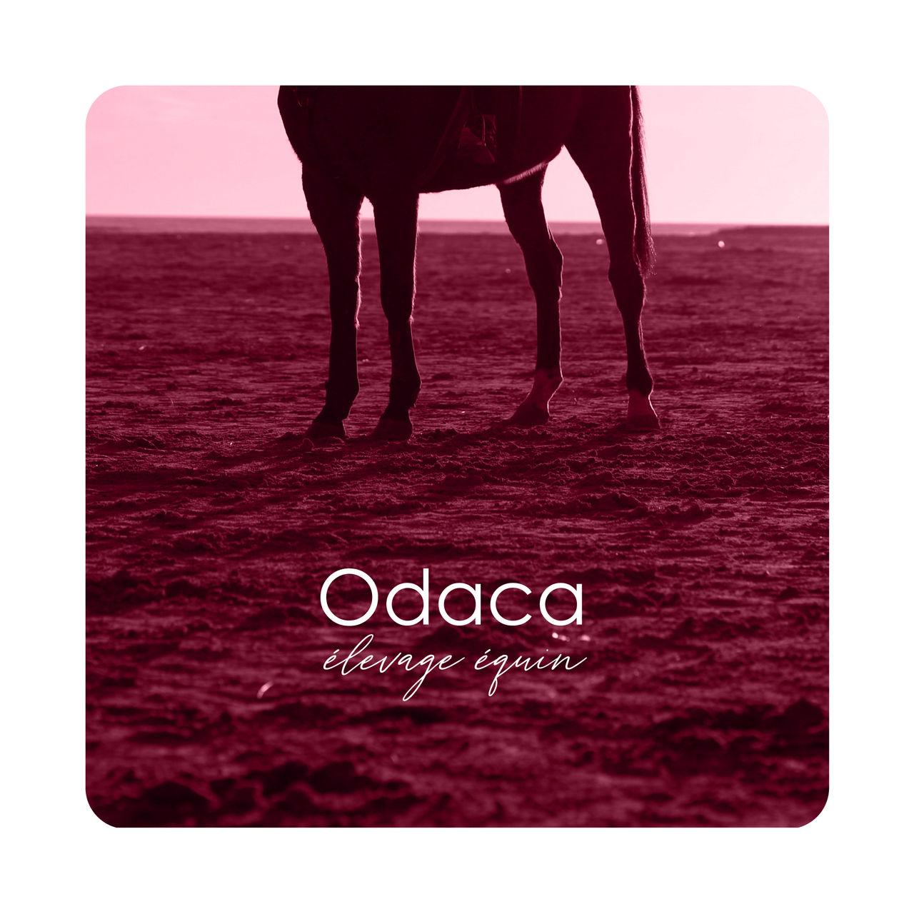 Elevage Odaca - logo