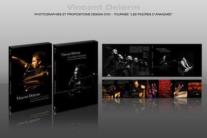 DVD tournée Vincent Delerm