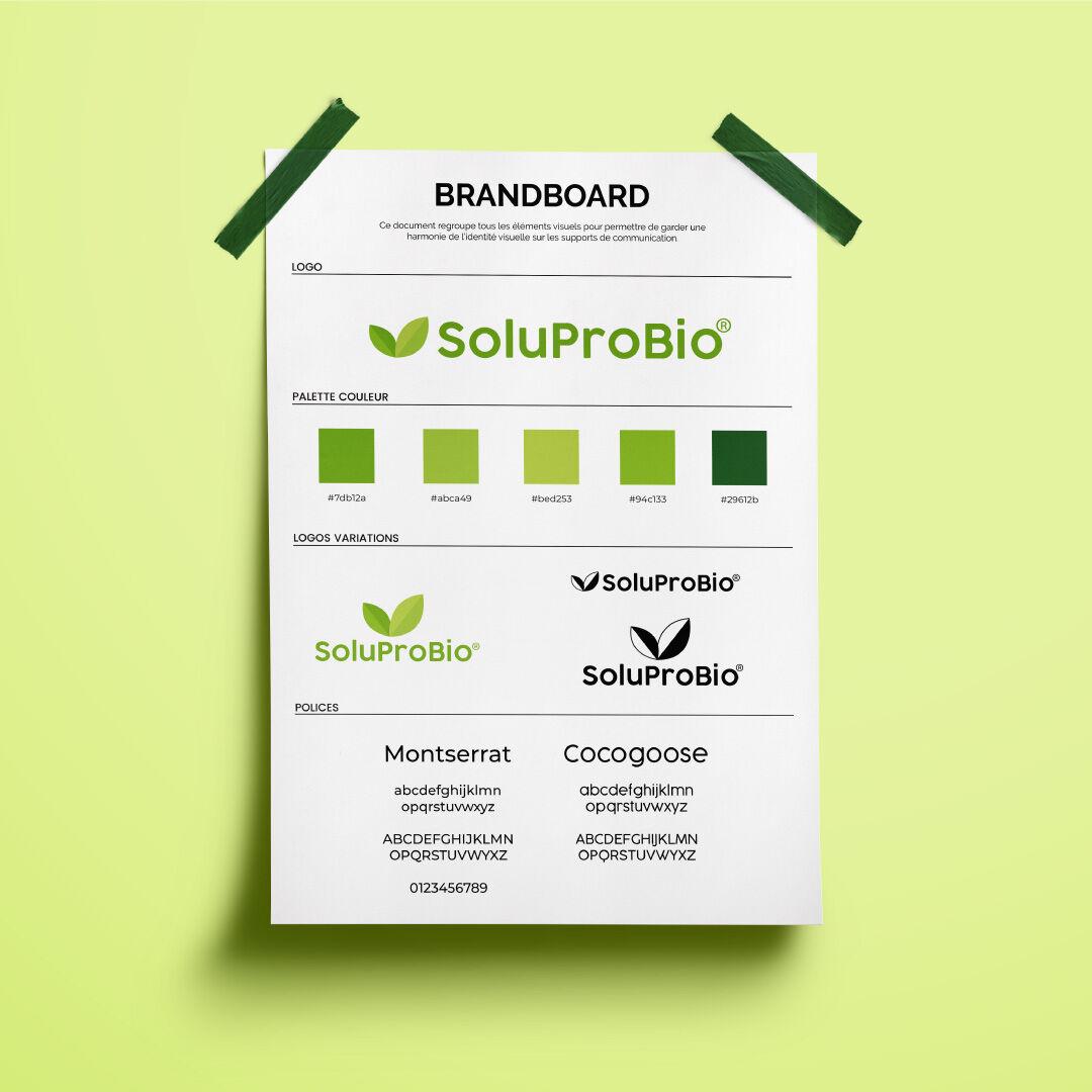 Logo & BrandBoard