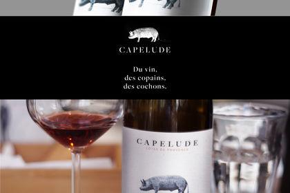Domaine de Capelude