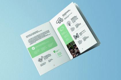 Brochure pour l'association Noé