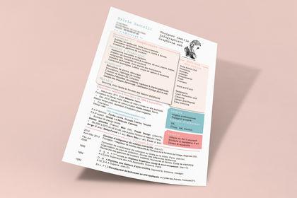 Mise en page cv designer illustratrice