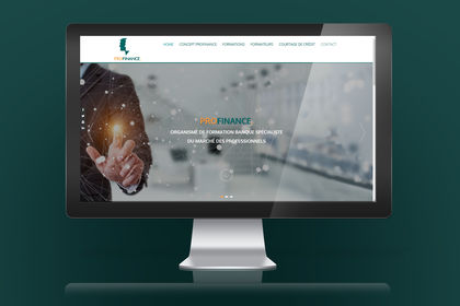 Charte graphique web, site vitrine profinance
