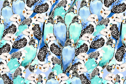 Dessin all-over birds