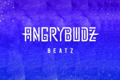 Logo & Pochette - Angry Budz
