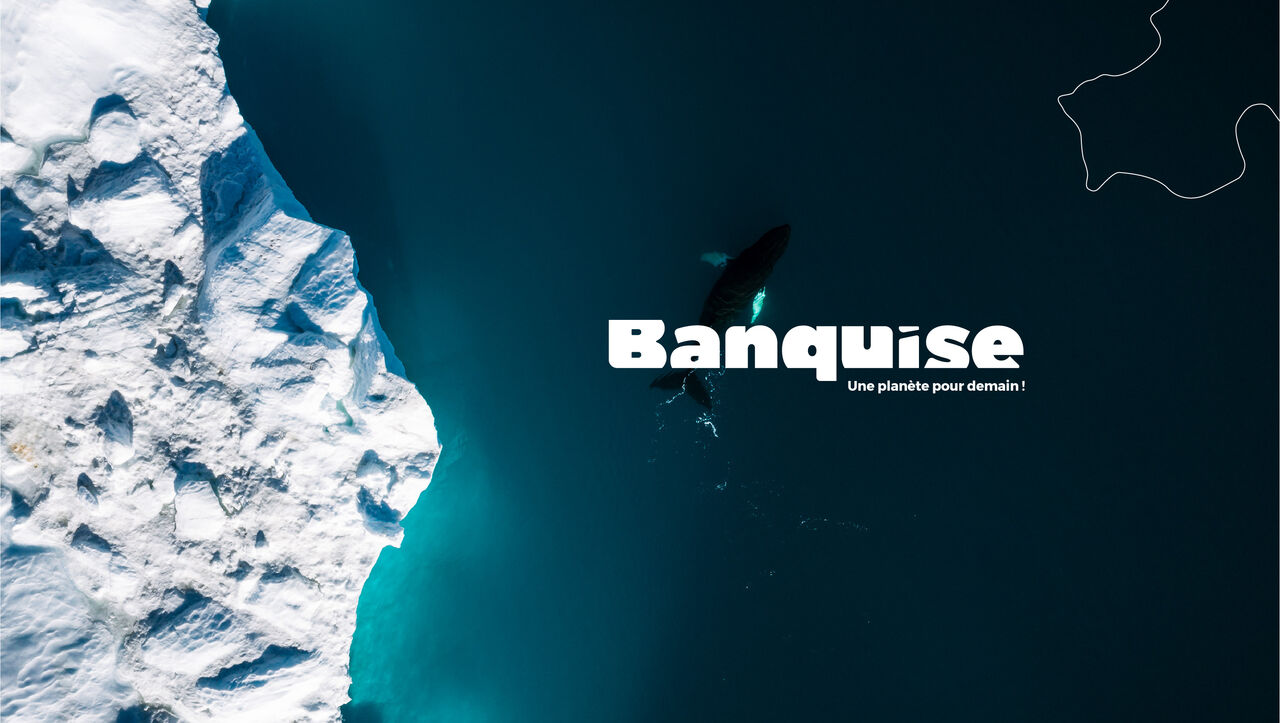 Logotype - Banquise