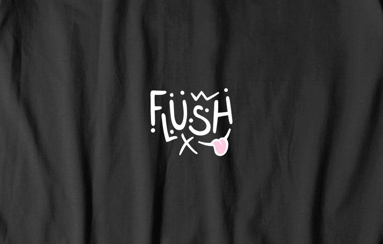 Logo - Flush skateboarding