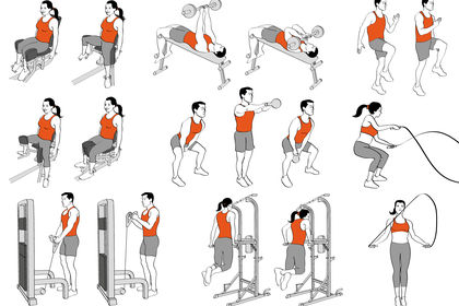 Exercices musculation