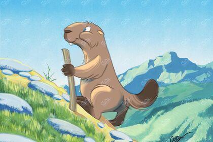 Marmotte en rando.