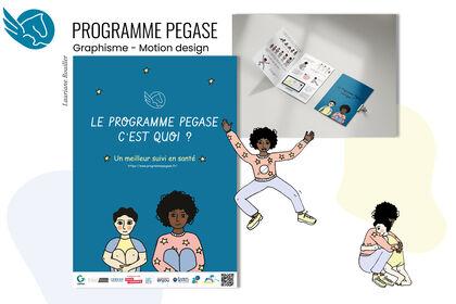 Programme Pegase