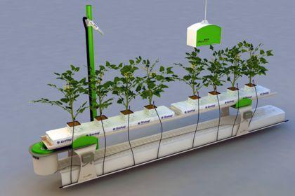 Conception balance de mesure pour plantes