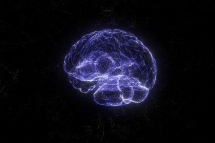 Holo brain