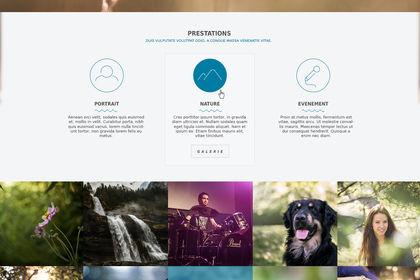 Web Design PEH