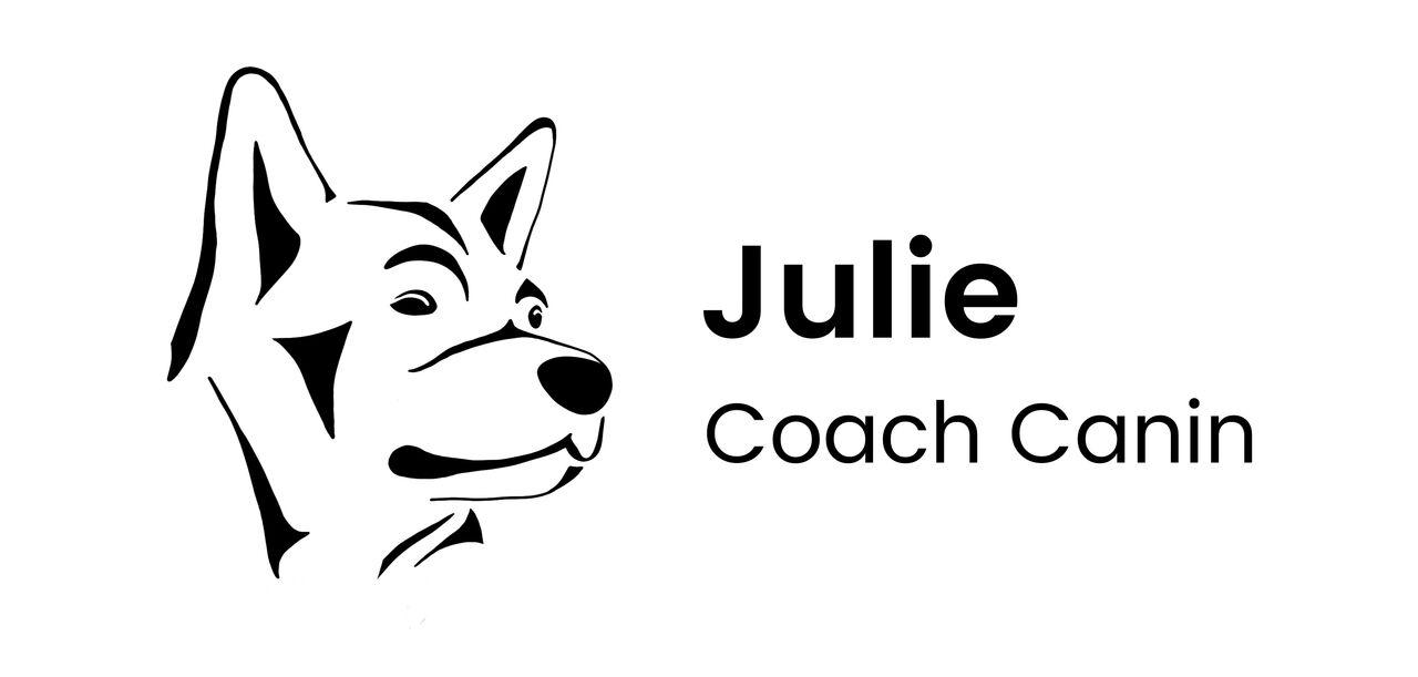 Logo sur mesure pour entreprise coach canin