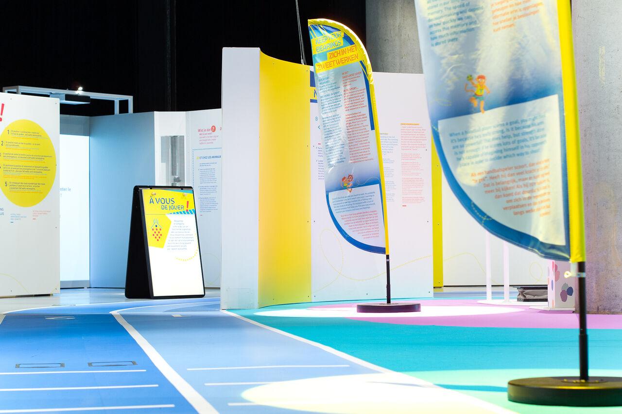 Exposition Tous sportifs