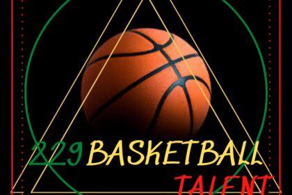 Logo 229 Basketball