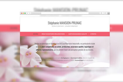Site Internet - Stephanie Mansion