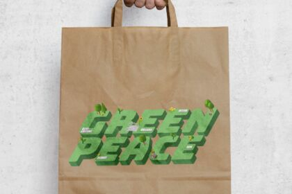 Projet Fictif :  GREEN PEACE