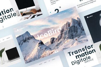 UI / UX Design desktop - Icebird