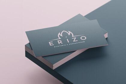 Logo + Cartes Erizo