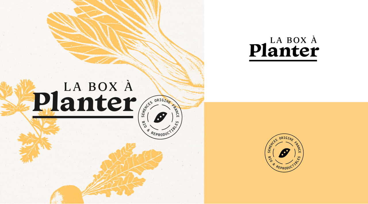 Identité visuelle - La Box à Planter