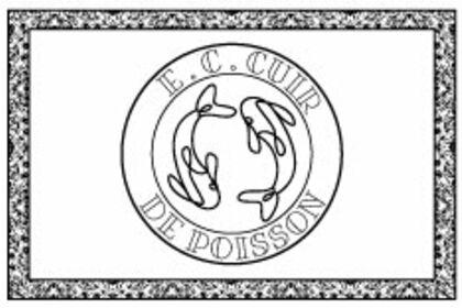 Logo E.CCUIR