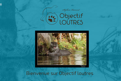 Site web responsive design Objectif Loutres
