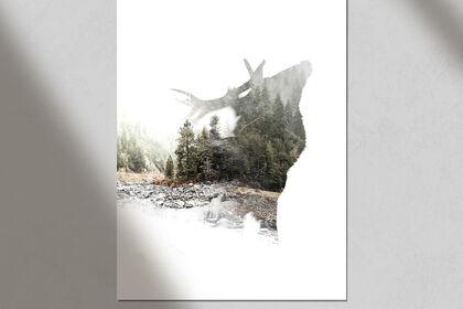 Photomontage Cerf