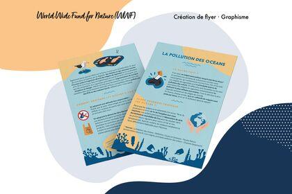 WWF - Graphisme