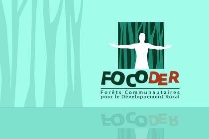 Logo et charte graphique - Développement durable