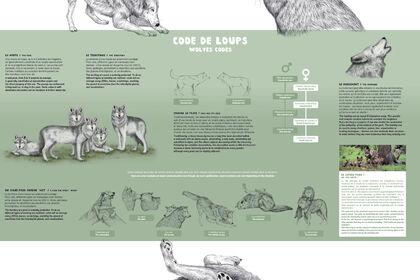 Panneau codes de loup