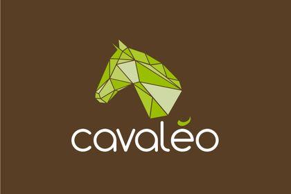 Cavaléo
