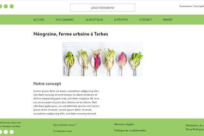 Maquette site web - ébauche 1