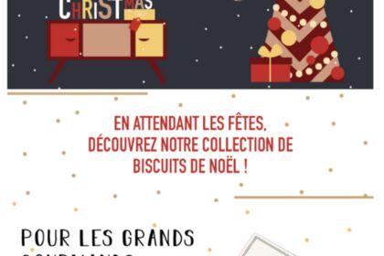 Newsletter Noël