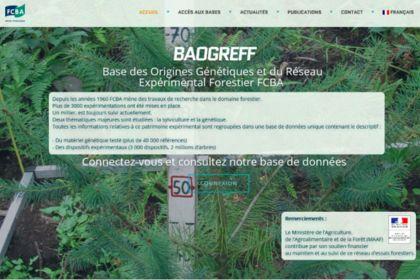 BAOGREFF