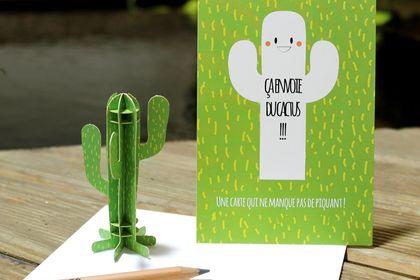 Ca envoie du cactus !