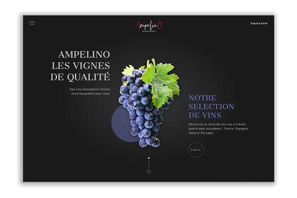Site vitrine - Distribution de vin