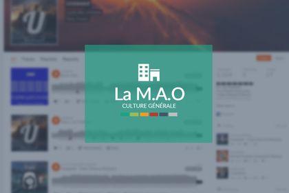 """""""La M.A.O"""""""
