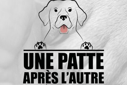 Logo éducatrice canine