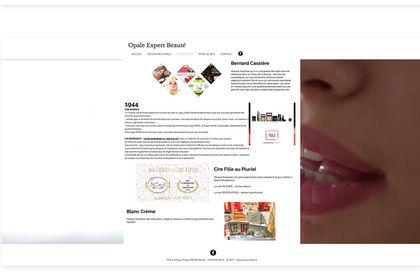 Webdesign du site www.opale-expertbeaute.com