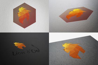 Logo pour le site Liondoc