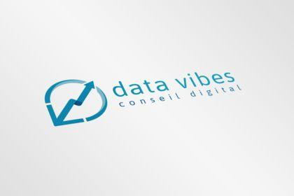 Data Vibes