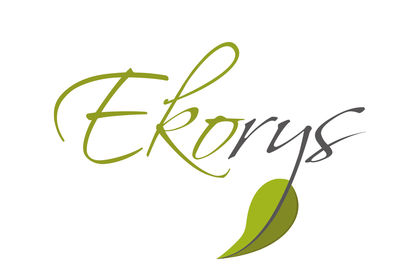 Logo Ekorys
