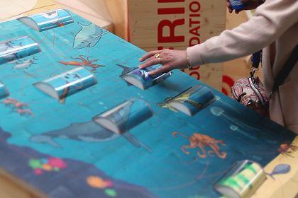 Surfrider Foundation – Expo Face à l'Océan